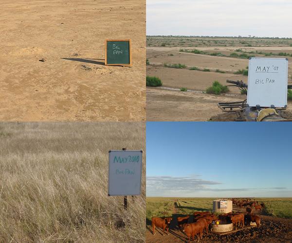 Regenerating The Landscape