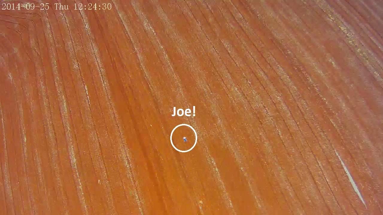 Robota-Joe-Spotted