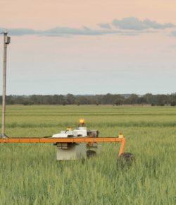 Robotics Engineer – Who Lives & Breathes Robots – Swarmfarm – Brisbane – Startup Jobs